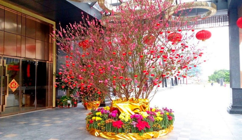 Guangzhou, the Chinese City of Flowers